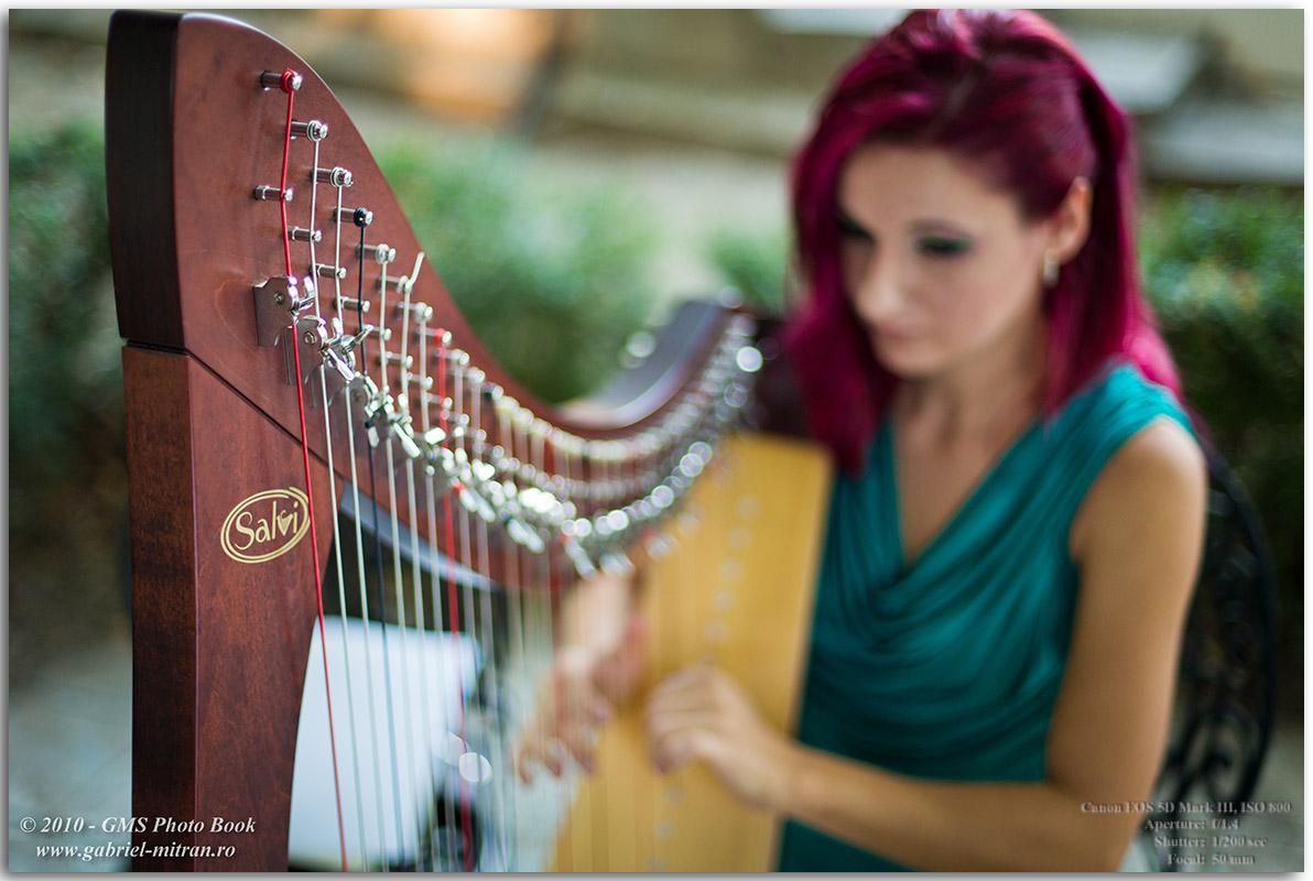 Fotograf Nunta Alexandra Alex Nunta Bucuresti